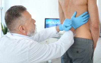 El riñón: principal órgano afectado por la diabetes
