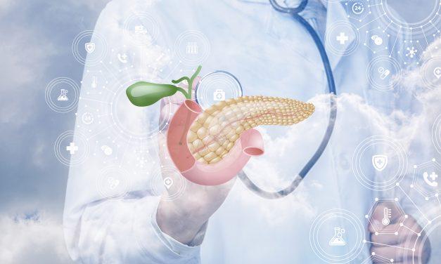 Un páncreas bioartificial mejoraría las posibilidades de éxito en los tratamientos para la diabetes tipo 1